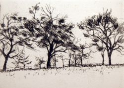 Artwork preview : Etchings, Trois arbres