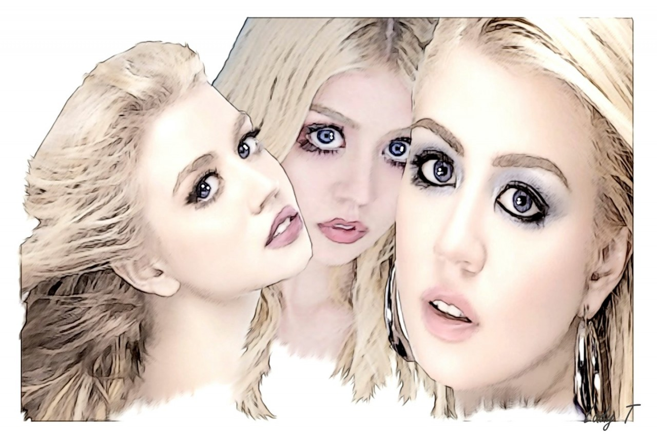 Artwork picture : Teresa Little, Allison Harvard Portrait