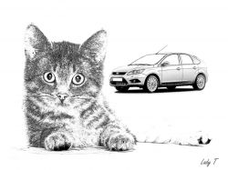 Artwork preview : Prints, Little : cat and ford focus