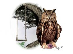 Artwork preview : Prints, Garden Owl
