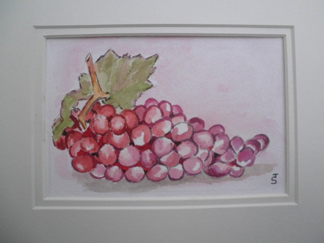 Artwork picture : Sylvie Toublanc, raisins