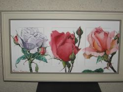 Artwork preview : Watercolors, triptyque roses